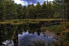 muskoka-3 (mrazphoto) Tags: park autumn lake ontario canada nature leaves nikon fallcolors muskoka hdr