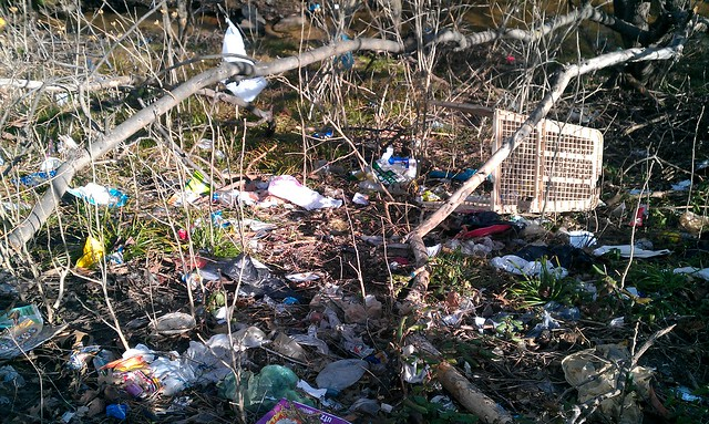 Trash and debris on the Banks of Bread and Cheese Creek at Merritt Blvd.  Help us clean it up 4/14/12