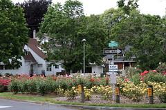 East Garden in Ladd's Addition (sandy richard) Tags: flowers usa gardens oregon portland unitedstates sandyrichard sandrarichard