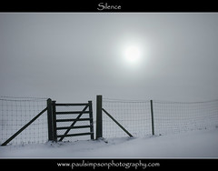 Bleak Weather (Paul Simpson Photography) Tags: winter white mist snow art silhouette misty fog fence photography mono gate post snowy postcard bleak chilly bleakness minimalistic whiteout chickenwire verycold wirefence foggyday nicephotos northlincolnshire photosof picturesof coldsnap snowphotos canvasart postcardphotos snowyweather mistyweather normanbypark weatherphotography niceimages snowphotography northlincs photosforcalenders imagesof bleakweather southhumberside bestimages postcardimages february2012 paulsimpsonphotography silhouetteimage coldweatherimages photosforcalendars
