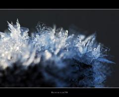 Baby, it's cold outside #2 (Borretje76) Tags: macro netherlands metal iso100 iron crystals crystal sony sneeuw sigma f10 bolt glimmen enschede kristal metaal bout ijs koud 180mm glinstering glinster glinsteren freesing kristallen gupr borretje76 dslra580 boutindeleuningvaneenbruggetje