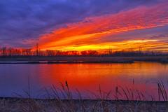 Duck Lake Light Show (Kansas Poetry (Patrick)) Tags: lawrencekansas bakerwetlands wakarusawetlands captainthedog captainandpatrickwaitedfornancy