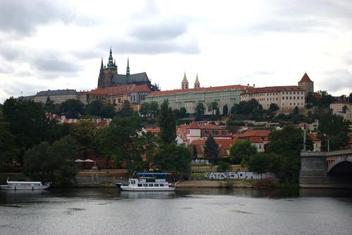 Naturalia du cabinet de curiosités : un pavé de Prague