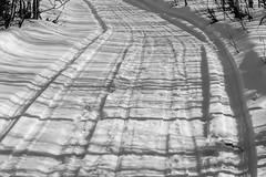 IMG_2429 (d.schaefer) Tags: winter norway hütte norwegen röros valhall øvensenget