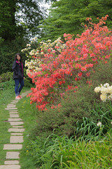Spring Garden Walk (Adam Swaine) Tags: uk england english nature gardens canon kent spring colours seasons britain nt paths nationaltrust emmetts 2016 swaine