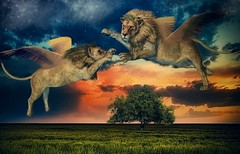 when the sun goes down (Swissrock) Tags: africa photoshop wings digitalart may surreal manipulation fantasy lions photoart challenge lightroom lwen digitalpaint 2016 airfight photomatix luftkampf andykobel