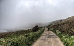 Walking into the fog, Clonque, Alderney (neilalderney123) Tags: road fog landscape walk olympus alderney clonque weathercloud 2016neilhoward