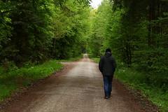 Andreas will die Wildschweine besuchen (im_fluss) Tags: wood green forrest path grn wald weg sauschtt raumoberbayern ebersbergerforst gerumt hohenlinden