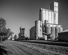 Silo Row (Mike Schaffner) Tags: old railroad morning trees blackandwhite bw sunlight monochrome blackwhite rice tracks railway row silo silos