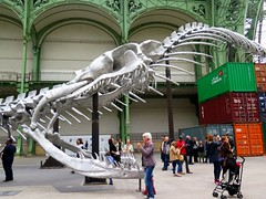 Monumenta 2016 - Empires by Huang Yong Ping - Grand Palais, Paris (Sokleine) Tags: paris france museum skeleton snake exhibition muse exposition installation bones serpent containers empires grandpalais squelette 75008 bicorne huangyongping grandenef monumenta2016