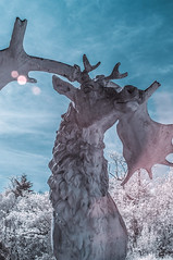 Crystal Palace Park (blackwoodse6) Tags: park uk blue england sculpture white london animal nikon infrared sunflare crystalpalacepark falsecolour se19 londonparks 720nm nikond300
