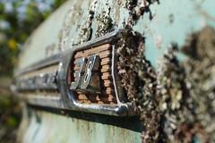 (History Rambler) Tags: chevrolet apache yes dumptruck mytruck 38 1959 sooc