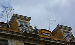 Above the roofs of Lisboa (Niwi1) Tags: roof house portugal nikon outdoor top haus lissabon dach oben niwi1