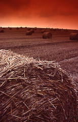 Harvest Time (Neville Wootton Photography) Tags: colour 35mm arty sunsets agriculture bales