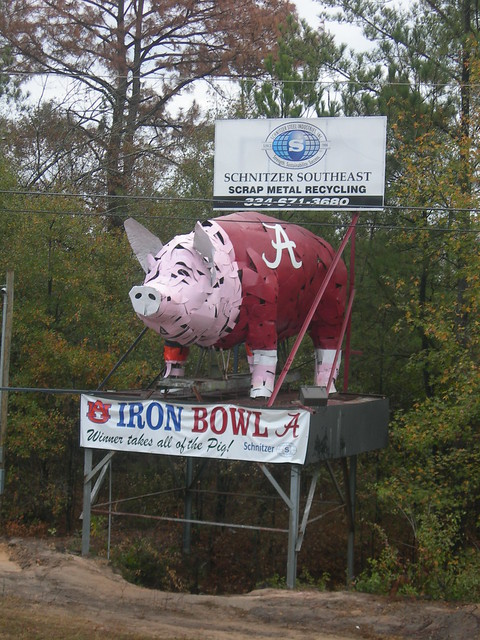 The IRON BOWL Hog