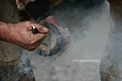farrier I (rinathompsonphotography) Tags: newzealand horses people work southisland blacksmith trade careers farrier tradesman southwestland