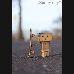 Sunny day (Oliver Totzke) Tags: 2 canon toy 50mm mark f14 days ii 5d 365 usm 50 ef danbo revoltech danboard 5d2 5dmk2 5dmark2