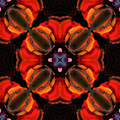 Kaleidoscope (Bhaskar Dutta) Tags: light shadow wallpaper photoshop square mirror design colours tag kaleidoscope elements twirl cloths effect