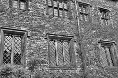 DSC_0077 - Windows (SWJuk) Tags: park uk autumn windows england home nikon lancashire burnley 2011 d90 towneley northwing towneleyhall nikond90 myfreecopyright swjuk nov2011