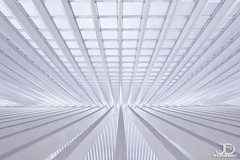 Walk of lines - Lige Guillemins (JD Photographie.) Tags: santiago light sunset art colors lines station architecture digital canon photography 1 julien exposure raw photographie belgium belgique time gare curves escalator explore 200 calatrava rails 100 jd dri franais hdr lige blending wallonie belge flyaway delaval 100faves guillemins 200faves 40d canon40d jdphotographie