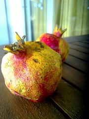 two... (dimitra_milaiou) Tags: world life wood city pink blue autumn light red 2 two food house color colour fall love home nature fruits beautiful beauty smile yellow fruit table rouge greek design living nokia wooden still couple europe december day natural time bokeh good balcony hellas lifestyle pomegranate surface athens greece mature together luck planet taste dried wish athena athina dimitra hellenic x6 attiki αθηνα ελλαδα φθινόπωρο δυο κοκκινο φθινοπωρο ροδι δημητρα milaiou μηλαιου ροδια