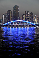 Blue Arch (chibitomu) Tags: city bridge blue water night canon river eos tokyo mygearandme mygearandmepremium mygearandmebronze masterclasselite chibitomu