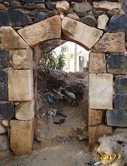 DSC0773sfds6 (1) (fadi haddad333) Tags: jordan من صور haddad fadi موقع حداد irbid اثري بيوت التراث القديمه فادي الاردن بوابه نيوز اربد الالكتروني huwwarah مرعي حواره وشباك والاثرية