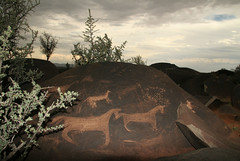 Bushman Carvings (cowyeow) Tags: africa old sunset art grave animals rock stone dark southafrica ancient desert sundown african hunting culture dry roadtrip forgotten cape mystical rare carvings bushman westerncape khoisan jagersberg khoesan khoesaan khoesan