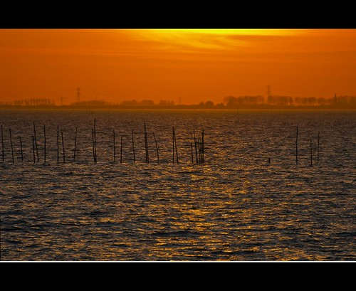 Golden hour at the Oosterschelde