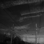 Electric Wires thumbnail