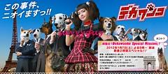 1.7 NTV デカワンコ新春SP
