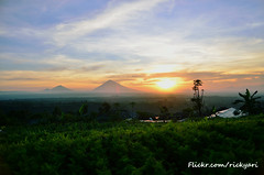 Morning Beauty (Ricky Nugraha) Tags: morning beauty fog sunrise dew batur kintamani beratan