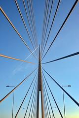 (Harruko) Tags: bridge lines ada minimal most lamps beograd nikond40 mostnaadi