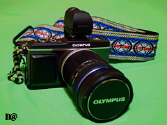 Olympus PEN E-P2 (Dusty Woods) Tags: pen four view olympus system micro finder thirds ep2 vf2