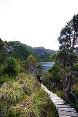 """Dove Lake Circuit"" (HAMACHI!) Tags: summer sky lake forest photoshop trek walking landscape rainforest scenery pentax hiking walk sigma australia trail tasmania wilderness retouch moutain dovelake cradlemountain k7 2011 cradlemountainlakestclairnationalpark 816mm dovelakecircuit 816mmf4556dchsm"