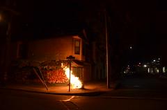 San Francisco 012 (Michael Kappel) Tags: sanfrancisco california ca fire graffiti san francisco flames arson firing pyromania treeonfire sanfranciscograffiti burningtree torching incendiarism settingfire burningchristmastree christmastreeonfire