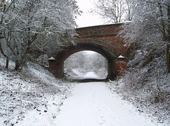 winter walk (Windless) Tags: snow trail teversal nottinghamshire old railway line white bridge winter flickraward ringexcellence mygearandme wow1 allofnatureswildlifelevel1 autofocus wow2 dblringexcellence wow3 wow4 blinkagain ruby5 saariysqualitypictures day