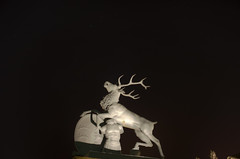 Jager Deer (Ramiro Marquez) Tags: city statue germany deutschland europe stuttgart center deer schlossplatz hdr newpalace neueschloss