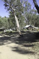 01012012_CONFEST-0654 (Tali C.) Tags: people colour nature festival bush hippy australia newyearseve newsouthwales confest