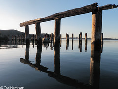 The old Benicia ferry terminal (thamiter) Tags: california reflection water northerncalifornia boat kayak january estuary sanfranciscobayarea bayarea pointandshoot eastbay pilings benicia solano ferryterminal 2012 necky looksha carquinezstrait shotfromakayak olympusstylustough6000 sportlv