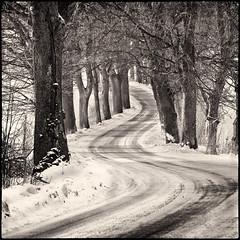 Bends (warmianaturalnie) Tags: road winter bw white snow black ice square landscape alley curves poland polska zima droga 2012 śnieg lód warmia wow1 wow2 wow3 bends krajobraz wowhalloffame kwadrat zakręt alwaysexc