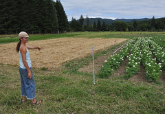 Beth Hoinacki shows an aspect of her crop rotation and cover-crop plan
