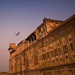 Ae uqaab! (JHNZB) Tags: pakistan sunset sky building bird nature birds canon photography eagle god hawk flight sigma 1020 lahore soar shaheen lahorefort glide junoon iqbal 550d allamaiqbal khuda khudi