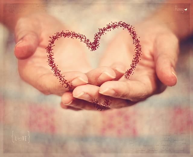 {5/52 ~ Thankful to Life: Love}