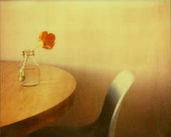 What a terrible mistake to let go of something wonderful for something real (*Cinnamon) Tags: stilllife film instant polaroidspectraaf impossibleproject pz680