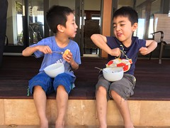 Oscar Does a Little Strawberry Shortcake Dance (Glenn H. Kelman) Tags: vacation hawaii may kauai princeville 2016 tobykelman oscarkelman