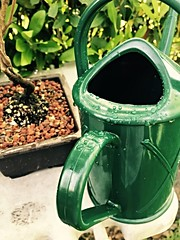 (A - Love Photography) Tags: flowers green garden wateringpot
