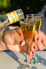 TH20160506A608486 (fotografie-heinrich) Tags: trinken ostsee glas zingst fingerngel stdteortschaften honiglikr
