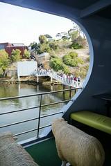 P1040450 (katredmond) Tags: modernart australia mona tasmania museumofoldandnewart