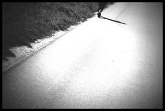 la strada (Bernd Kretzer) Tags: road blackwhite holga lomo 60mm schwarzweiss f8 weg hln strase